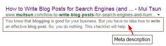 Search engine meta description
